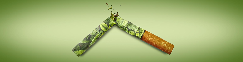 casaa menthol ban